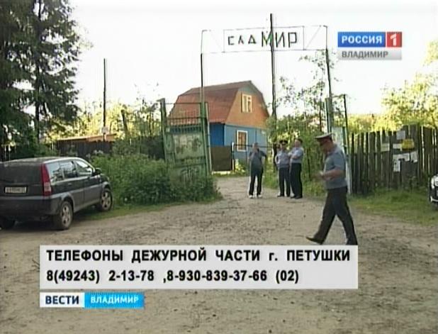 http://vladtv.ru/upload/iblock/699/6991e56d8640bc29b99cbff9f13a5b70.jpg